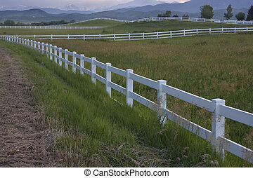 dusk at pasture in Colorado foothills