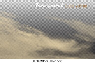 Dust cloud with dirt on transparent background. Vector