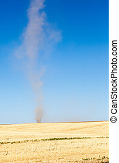 Dust Devil in a Field