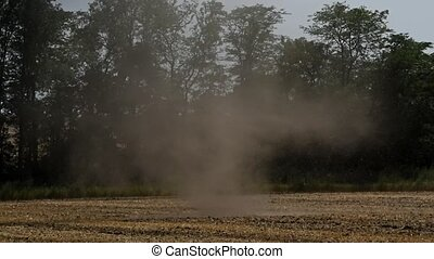Dust devil or small tornado on field