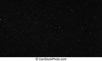 Dust flying on a black background, ashes, small particles