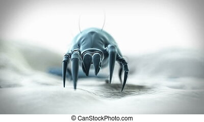 Medical animation of a dust mite