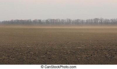 Dust wind on the field