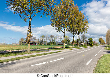 Dutch country road with farmhouse and trees in spring time