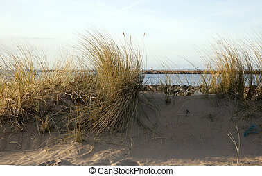 dutch dunes with blue sky