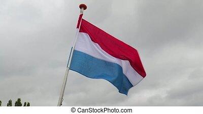 Dutch Flag Waving