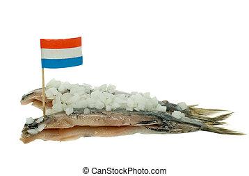 dutch herring isolated on white background