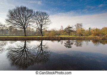 dutch landscape in winter - Beautiful dutch landscape in...