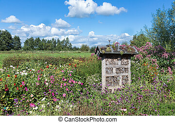 Dutch national park with insects hotel in colorful garden