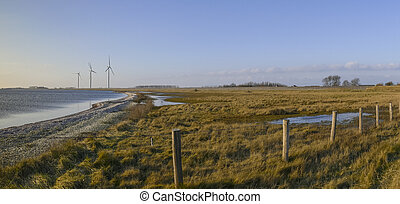dutch nature in zeeland panorama