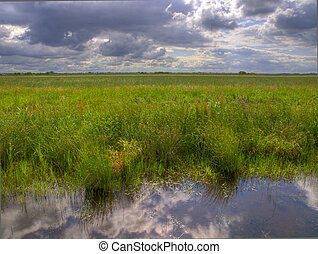 typical dutch polder with brooding sky