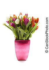 Dutch tulips - Colorful tulips in a metalic vase isolated...