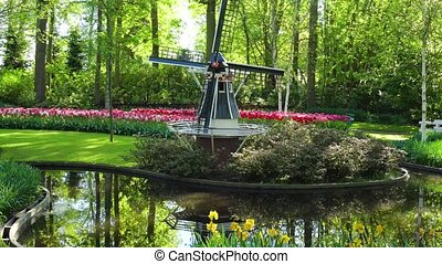 Dutch wind mills - landscape with traditional Dutch...