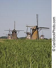 Dutch windmills in Kinderdijk,Holland