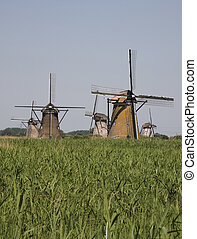 Dutch windmills in Kinderdijk,Holland
