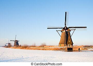 Dutch windmills in winter landscape, Kinderdijk, the...