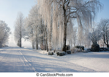 Dutch winter farmland covered with snow
