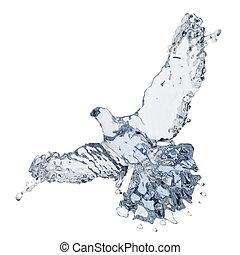 duva, av, vatten