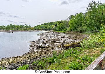 Duwamish Waterway Mud Flats 2