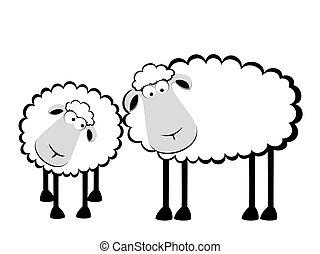 dva, karikatura, usmívaní, sheep
