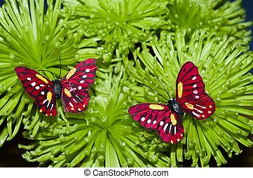 dva, motýl, dále, ta, květiny