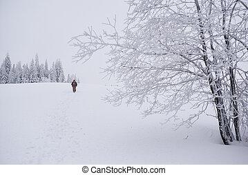 dvojice, skrz, sněžný, turistika, zima, bojiště