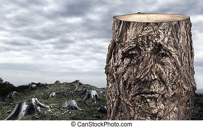 Conceptual picture of a tree stump with the shape of very sad human face on the bark