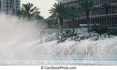 Dynamic show of fountains, water jets dance and make...
