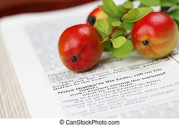 dziękczynienie, biblia