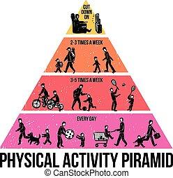 działalność, fizyczny, infographics