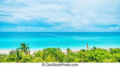 dzień, piękny, ocean, słoneczny