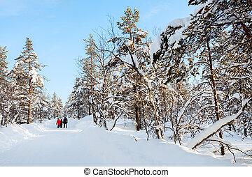 dzieciaki, ojciec, zima, outdoors