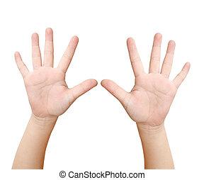 dziecko, ręka, jest, pokaz, dziesięć palców, odizolowany, na białym, tło
