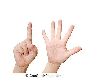 dziecko, ręka, jest, pokaz, sześć, palce, odizolowany, na białym, tło