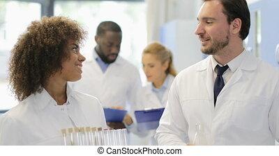 dzierżawa, pracujący, kolba, nowoczesny, razem, mówiąc, chemikalia, samica, naukowcy, próba, laboratorium, samiec, balie