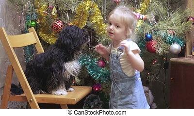 dziewczyna, drzewo, pies, boże narodzenie