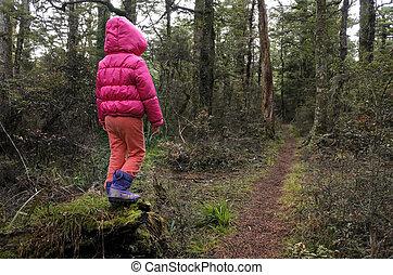dziewczyna, mały, deszcz, stracony, las