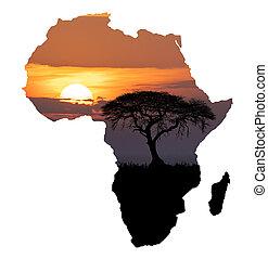 dziewiczość, pojęcie, afryka, pustynia