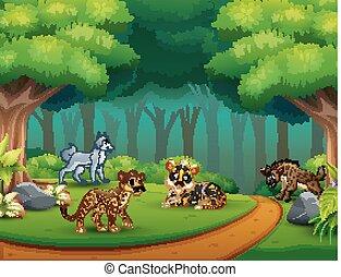dziki, dżungla, zwierzę, rysunek