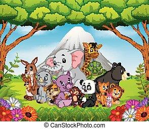 dziki, dżungla, zwierzę