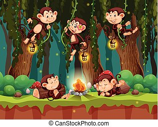 dziki, las, małpa
