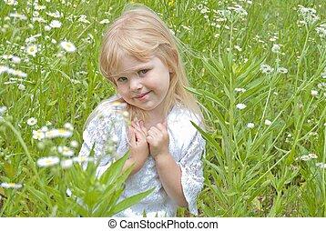 dziki, pole, mała dziewczyna, stokrotka