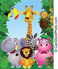 dzikie zwierzę, rysunek