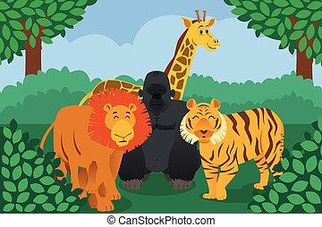 dzikie zwierzę, w, przedimek określony przed rzeczownikami, dżungla