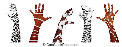 dzikie zwierzęta, hands., ludzka skóra
