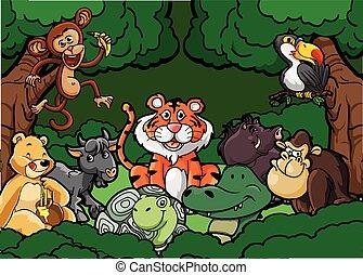 dzsungel, állat, színhely