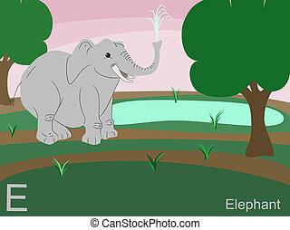 e, 動物, アルファベット, 象