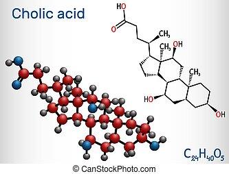 e, bilis, fórmula, primario, ácido, modelo, molécula, liver., producido, alimenticio, mayor, cholic, ácido, él, estructural, c24h40o5, 1000., químico, suplemento, molecule.