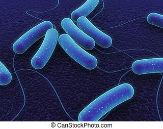 e-coli bacteria - 3d rendered close up of isolated e-coli...