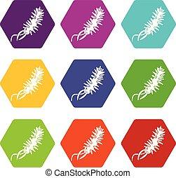E coli bacteria icons set 9 vector - E coli bacteria icons 9...